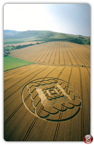 Crop circles - South Field, Alton Barnes, Wiltshire 2002
