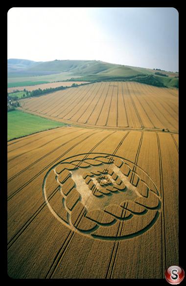 Crop circles - South Field Alton Barnes Wiltshire 2002