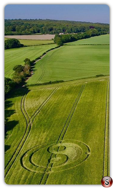 Crop circles Cley Hill - WIltshire 2020