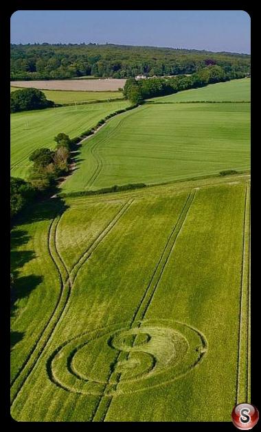 Crop circles - Cley Hill WIltshire 2020