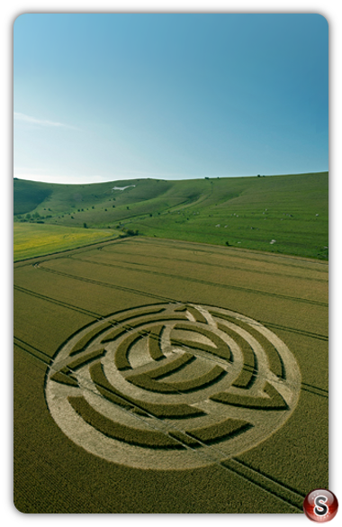 Crop circles Milk Hill, Nr Alton Barnes - Wiltshire 2011