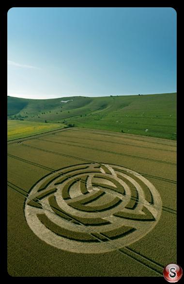 Crop circles Milk Hill Nr Alton Barnes Wiltshire 2011
