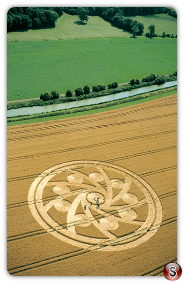 Crop circles - Woodborough Hill, Wiltshire 2001