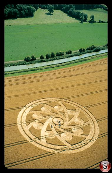 Crop circles - Woodborough Hill Wiltshire 2001