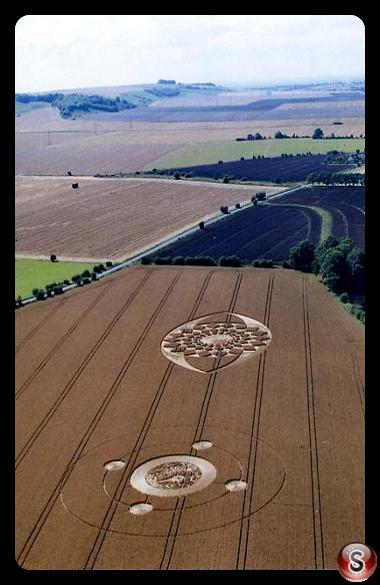 Crop circles - Marden A, Wiltshire 2005