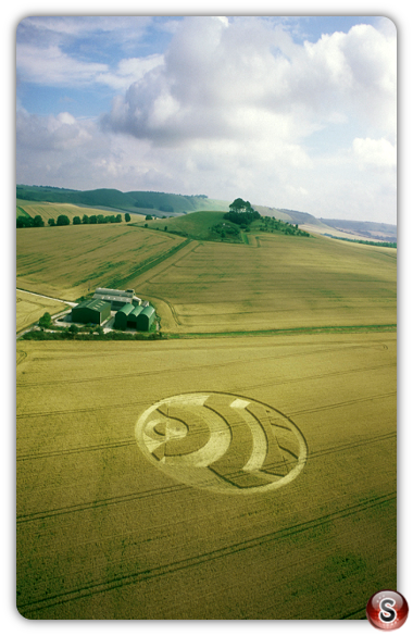 Crop circles - Woodborough Hill Alton Barnes Wiltshire 2003