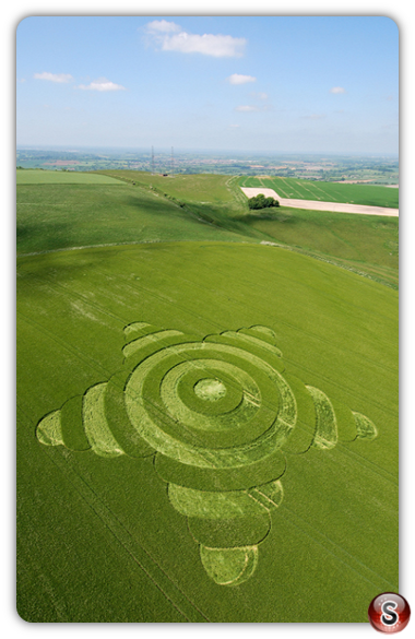Crop circles - Morgans Hill, Wiltshire 2007