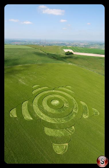 Crop circles - Morgans Hill Wiltshire 2007