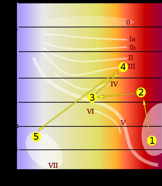 Il ciclo vitale del Sole sul diagramma H-R