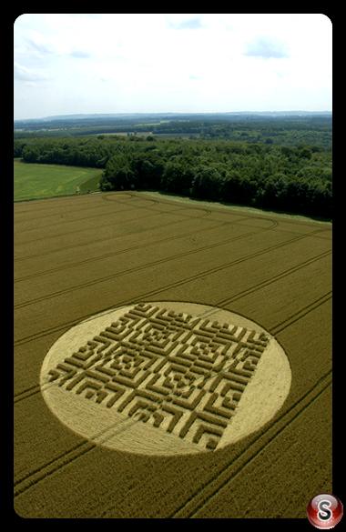 Crop circles - Forest Hill Marlborough Wiltshire 2004