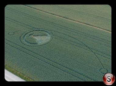 Crop circles  -Uster Zürich 2018