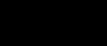 Crop circles  -Uster Zürich 2018 Diagram