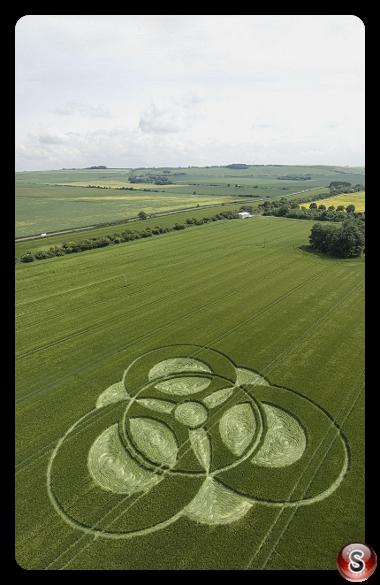 Crop circles - Chilseldon 2009