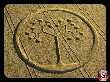 Crop circles - Farley Mount Hampshire 2002