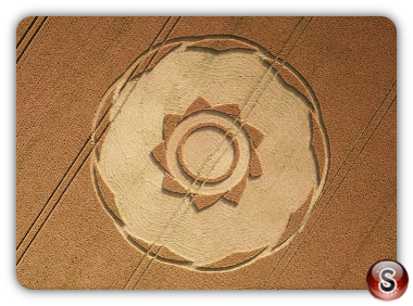 Crop circles Longwood Warren -  Hampshire 2018