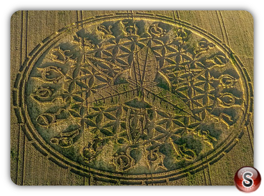 Crop circles Ansty - Wiltshire 2016