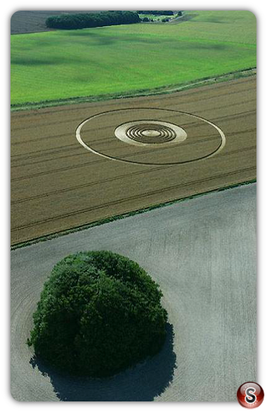 Crop circles - The Ridgeway above Avebury, Wiltshire 2005