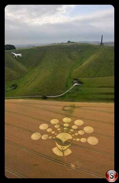 Crop circles - Cherhill Wiltshire UK 2011