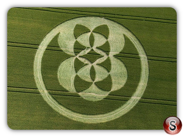 Crop circles - East Field, Alton Barnes, Wiltshire 2008