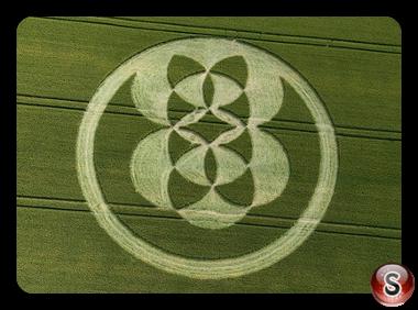 Crop circles - East Field Alton Barnes Wiltshire 2008