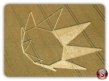 Crop circles - Longwood Warrren nr Winchester, Hampshire 2012
