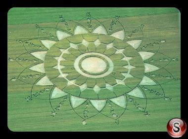 Crop circles Scalenghe - Piemonte 2017