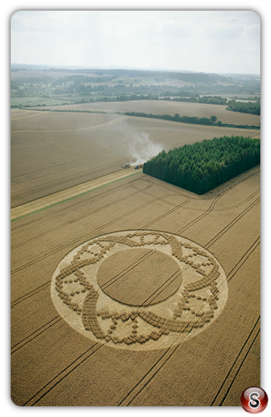Crop circles - Crooked Soley, Berkshire 2002
