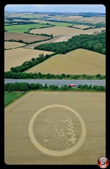 Crop circles - Wickham Green 2010