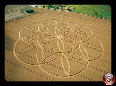 Crop circles - Barbury Castle Wiltshire 2003