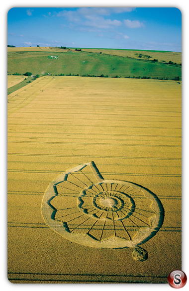 Crop circles - Pewsey White Horse Wiltshire 2002