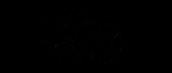 Crop circles - Udebiltdijk Friesland 2018 Diagram