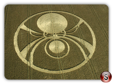 Crop circles - Etchilhampton Hill Wiltshire 2004