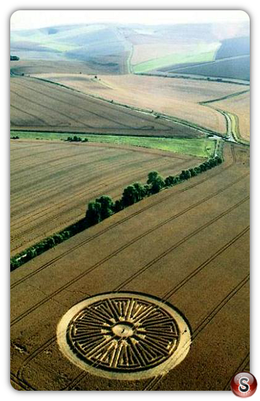 Crop circles - East Kennett, Wiltshire 2005