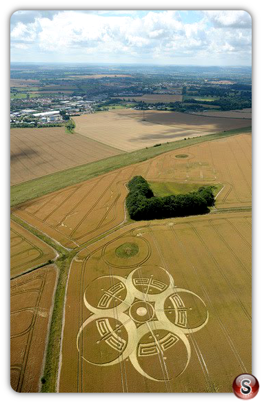 Crop circles - Roundway Hill 2010