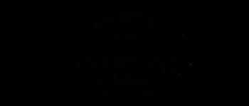 Crop circles - Büren an der Aare Bern 2019 Diagram