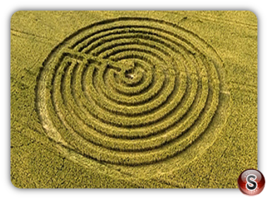 Crop circles Redlynch, Somerset UK 2015