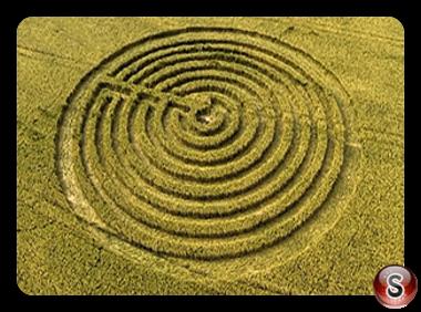 Crop circles - Redlynch Somerset UK 2015