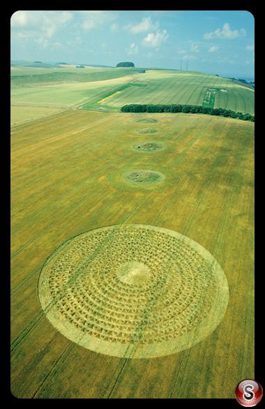 Crop circles - North Down Wiltshire 2003
