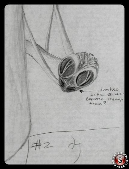 Disegno di Linda porter n. 2