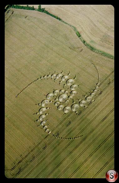 Crop circles - Windmill Hill Wiltshire 1996
