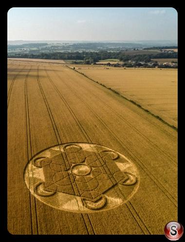 Crop circles - Nursteed Wiltshire 2016