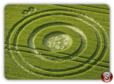 Crop circles - Cherhill Wiltshire 2012