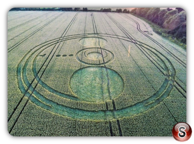 Crop circles Sutton Hall Essex 2014