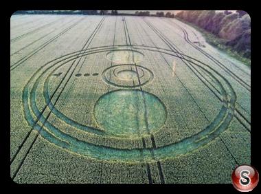 Crop circles - Sutton Hall Essex 2014