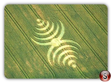 Crop circles - Southend 2007