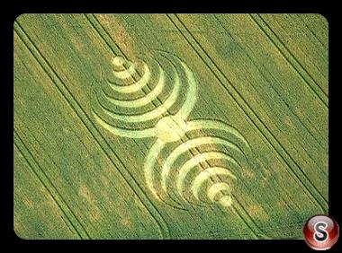 Crop circles - Southend 2007