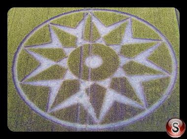 Crop circles - Willoughboy Hedge Wiltshire 2016