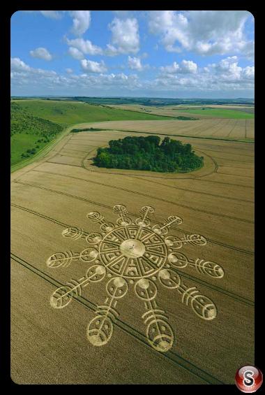 Crop circles Smeathes Plantation Wiltshire 2009