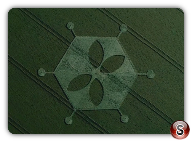 Crop circles - Yarnbury Castle Wiltshire 2018