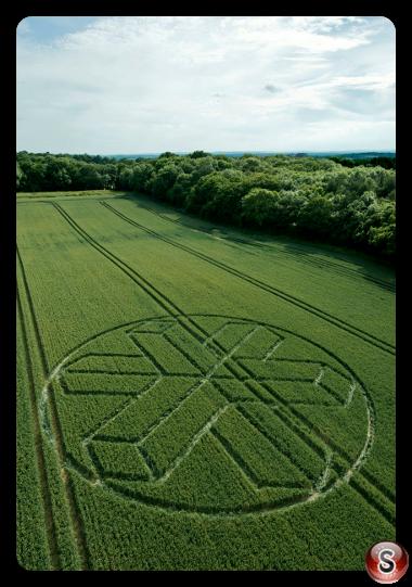 Crop circles - North Horsham Wiltshire UK 2015